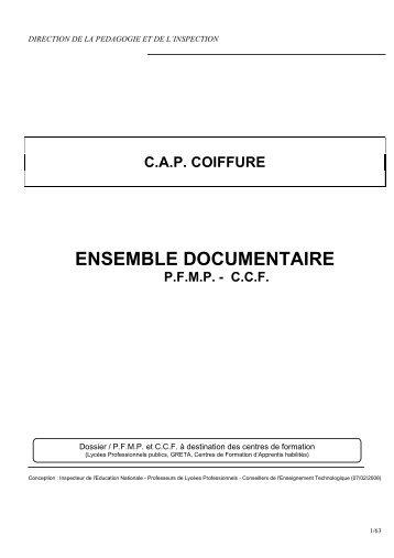 Ensemble documentaire CAP coiffure_2008 - Site STI Académie de ...
