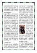 Grands singes, un devoir de famille - panda magazine - WWF France - Page 3