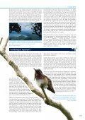 Important Bird Areas AMERICAS - BirdLife International - Page 5