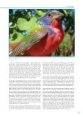 Important Bird Areas AMERICAS - BirdLife International - Page 7