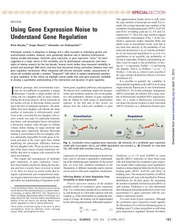 Using Gene Expression Noise to Understand Gene Regulation