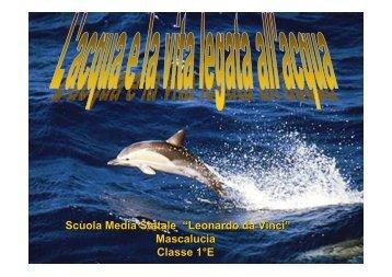 L'acqua e la vita le - Liceo Scientifico Galilei