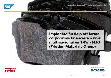 TRW – Plataforma Financiera Multinacional - Stratesys