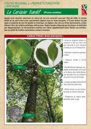 Le Cerisier tardif - Centres Régionaux de la Propriété Forestière