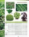 Télécharger le Catalogue - Graines Voltz - Page 6
