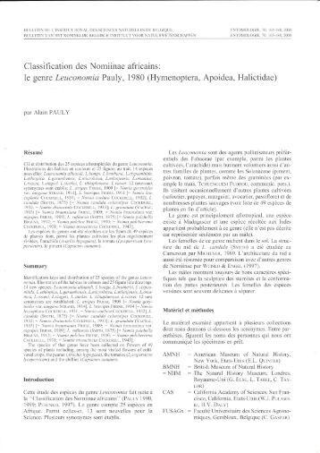Classification des Nomiinae le genre Leuconomia Pauly,