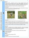 Pinède à molinie - Etat de Genève - Page 5