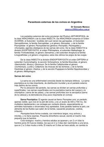 Parasitosis externas de los ovinos en Argentina - ovinos-caprinos