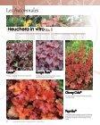 Télécharger le Catalogue - Graines Voltz - Page 4