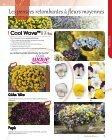Télécharger le Catalogue - Graines Voltz - Page 7