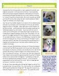 BICHONS BITS AND BYTES - Bichon FurKids Rescue - Page 2
