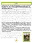 BICHONS BITS AND BYTES - Bichon FurKids Rescue - Page 3