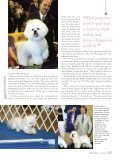 to read an article about care and the Bichon Personality from the - Page 4