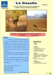 La Gazelle, n° 3, janvier 2013 - Délégation du Morbihan - Secours ...