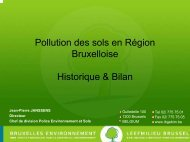 Jean-Pierre Janssens (.pdf) - Ibge