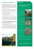 Le pin maritime : pilier de l'économie forestière d'Aquitaine - Page 4