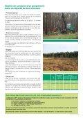 Le pin maritime : pilier de l'économie forestière d'Aquitaine - Page 5