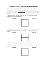 Monohybrid Crosses And The Punnett Square Lesson Plan Students