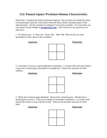 Printables Punnett Square Worksheet Answers ia2 punnett square worksheet human characteristics answers punt problem 3 in pea plant