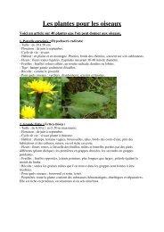 Les plantes pour les oiseaux - Eurobird and Co