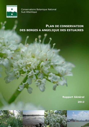 plan de conservation des berges a angelique des estuaires