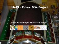 NA49 – Future GEM Project