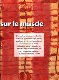 Nouveau regard sur le muscle - Page 2