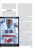 Nouveau regard sur le muscle - Page 6
