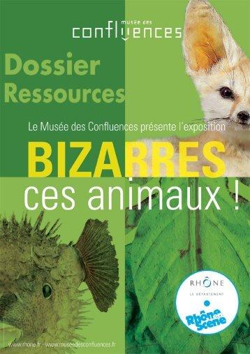 Dossier ressources - musée des Confluences
