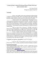 A estrutura produtiva e fundiária dos Municípios Paulistas de ...