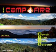 camp fire - ogKl