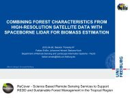Combining Forest Characteristics from high-resolution Satellite Data ...