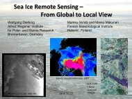 Sea Ice Remote Sensing – From Global to Local View Wolfgang