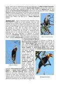 Itinéraire quotidien très détaillé, souvent en dehors des sites ... - LPO - Page 3