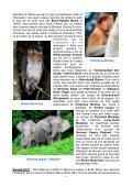Itinéraire quotidien très détaillé, souvent en dehors des sites ... - LPO - Page 4