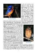 Itinéraire quotidien très détaillé, souvent en dehors des sites ... - LPO - Page 5