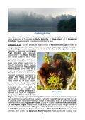 Itinéraire quotidien très détaillé, souvent en dehors des sites ... - LPO - Page 6