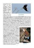 Itinéraire quotidien très détaillé, souvent en dehors des sites ... - LPO - Page 7