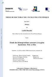 Etude des hémoprotéines senseurs à oxygène bactériens FixL et Dos.