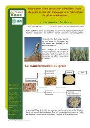 fiche prop blé dur - PSDR Coxinel