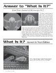 Texas Journal of Microscopy Texas Journal of Microscopy - Page 6