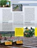 SAMUEL J. SHINE - SAMCO (Adare, Irlande) - About France - Page 2