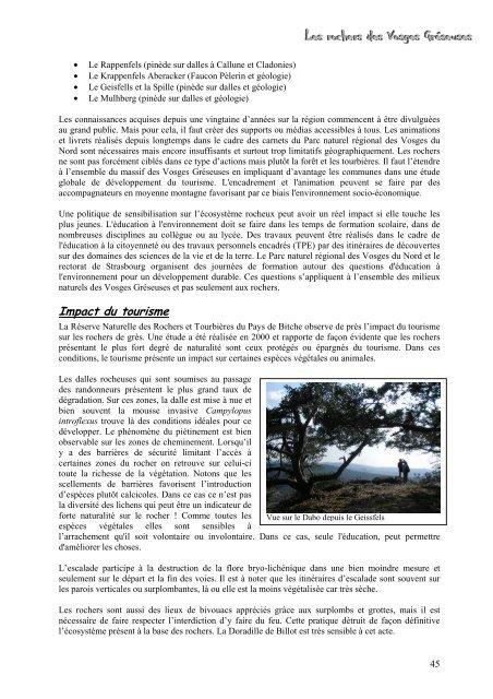 Les rochers des Vosges Gréseuses - JR Web Site