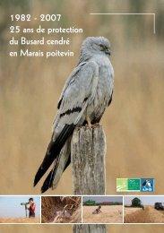 RAPPORT BUSARDS 25 ANS MP - Observatoire du patrimoine ...