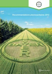Recommandations phytosanitaires 2012 - Bayer CropScience ...