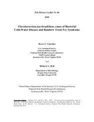 Flavobacterium psychrophilum, cause of ... - cop.eXtension.org