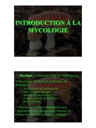 Support du cours LS3-2 (G.DECOCQ)