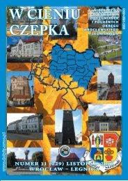 W CIENIU CZEPKA - Dolnośląska Okręgowa Izba Pielęgniarek i ...