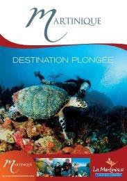 Guide des sites de Plongée - Les Vagues du Diamant