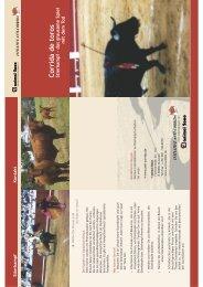 Corrida de toros Stierkampf - das grausam e Spiel m it dem To d